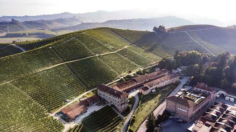 Wine, il Rinascimento Verde di Fontanafredda