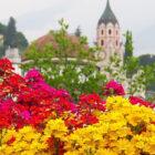 Merano festival di colori e profumi