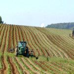 Agroalimentare pacchetto sostegni