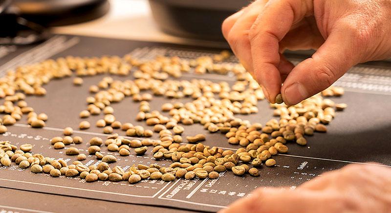 Nasce Accademia Napoletana del Caffè